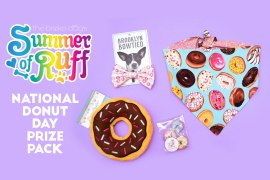 June 2, 2017 is NATIONAL DONUT DAY! Let's celebrate with some playtime, treats, and cute accessories.
