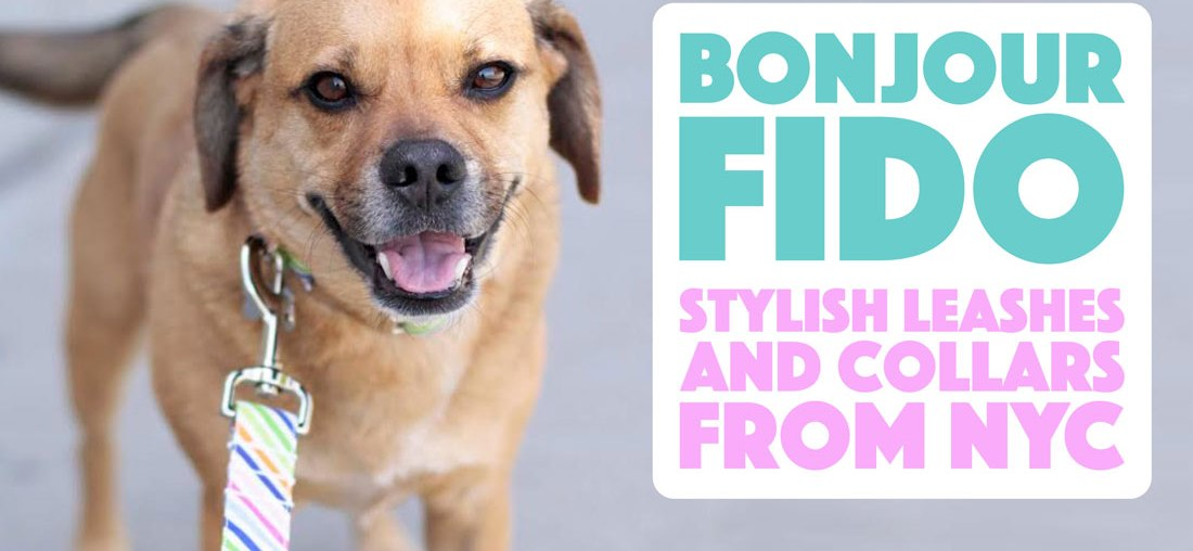 Bonjour Fido: Stylish Leashes and Collars From NYC