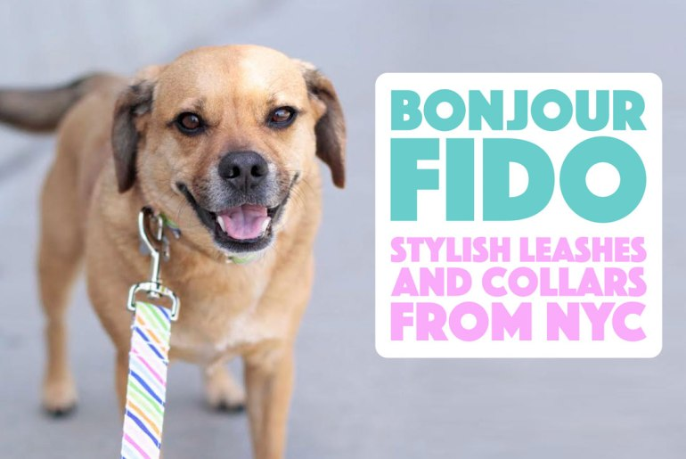Today we're interviewing Rachael Moin from bonjour fido! I've been a vendor alongside Rachael at several New York City dog events, and I'm absolutely in love with her products and her puggle, Napoleon. Keep reading to learn more about this New York City brand!