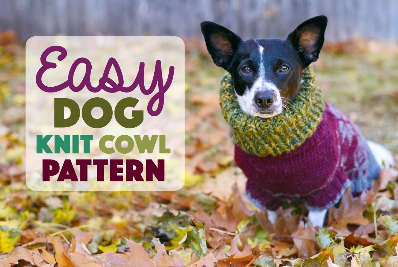 Easy Dog Knit Cowl Pattern - The Broke Dog