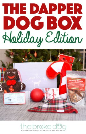 It's the holiday season, and we all have shopping to do. Make it easier for yourself by purchasing The Dapper Dog Box holiday edition for furry friends on your list!