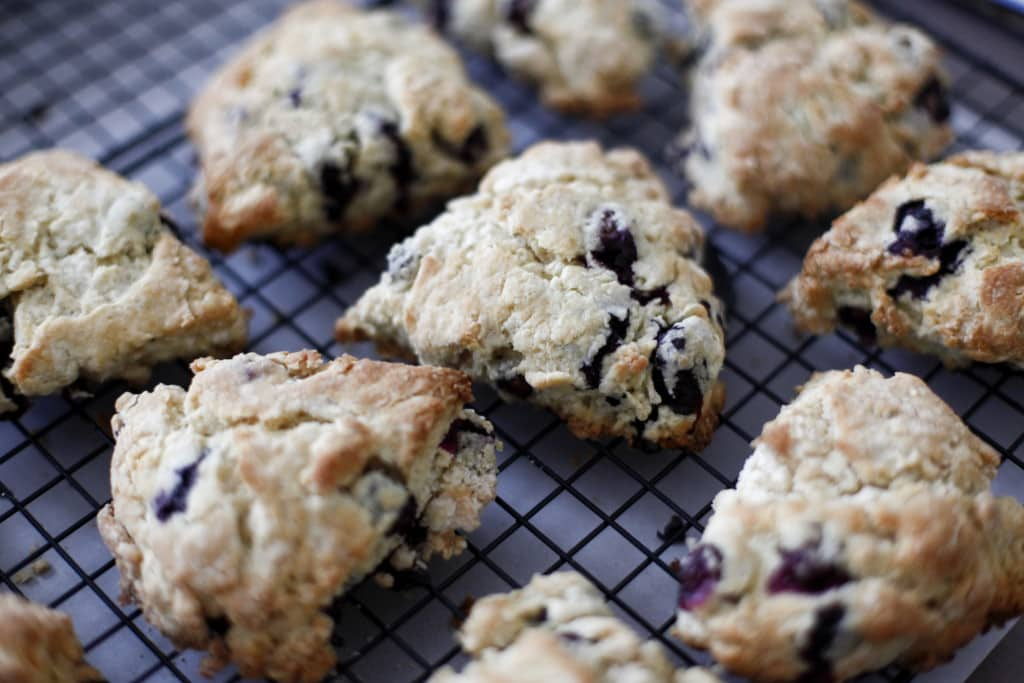 sone, blueberry, berry, sweets, sweet, dessert, food, foodie foodist, blog, food blog, blogger, the brooklyn cook, brooklyn, cook, cooking, bake, baking, baker, recipe, recipes,