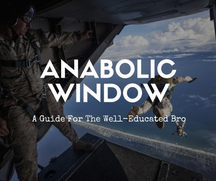 Anabolic WIndow Cover