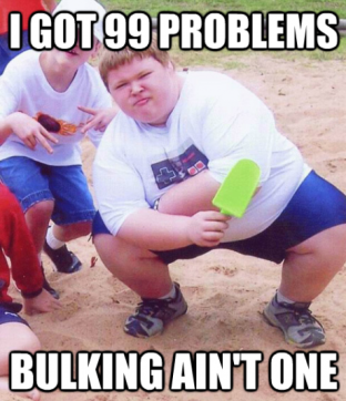 99 problems but bulking ain't one
