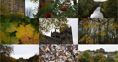 Images of Durham in autumn