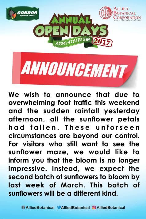 ABC sunflower announcement