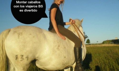 Dude, Where's My Horse? Sweet Deal in Uruguay.