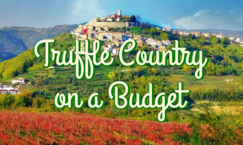 Motovun Istria   Best Places to Taste Truffle in Croatia and the World!