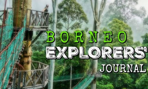 Exploring Borneo Island | Best Things to Do and See in Borneo!