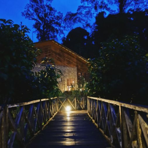 Exploring Borneo Island borneo rainforest lodge walking grounds at night