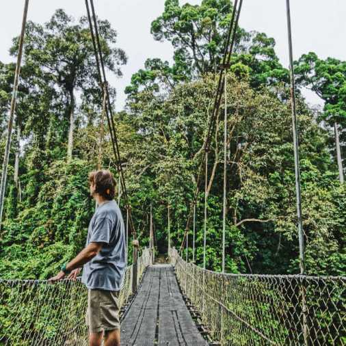 exploring borneo island river suspension bridge