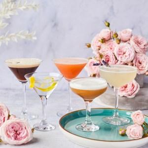 Martini Cocktail Kits