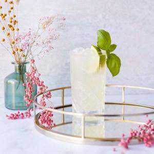 Basil Margarita Cocktails At Home Cocktail Kit