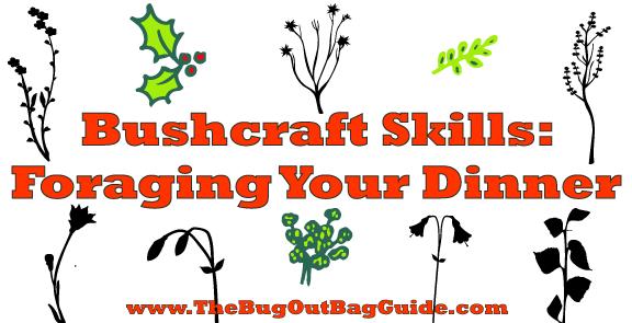 bushcraft skills