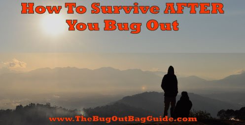 survival after bugging out