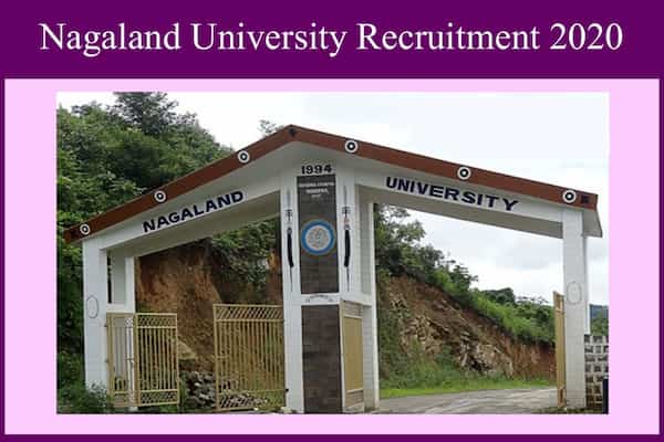 Nagaland University Recruitment