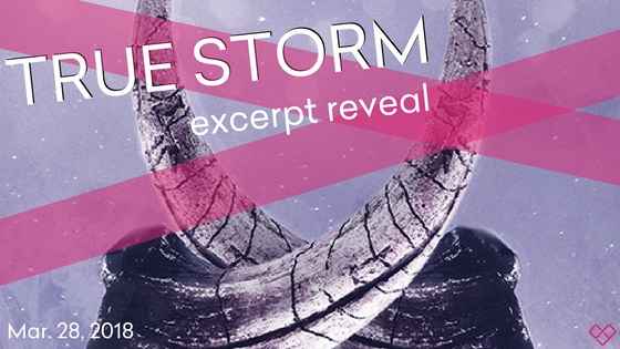 Excerpt: True Storm by L.E. Sterling