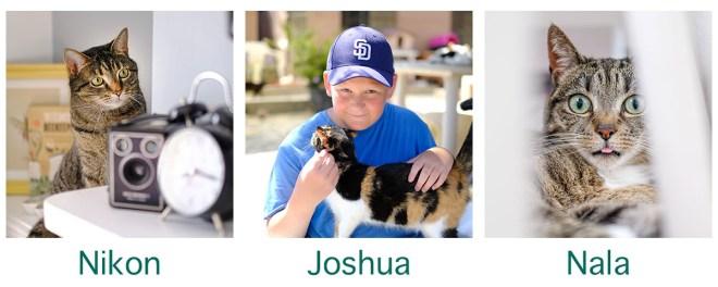 Nikon, Joshua and Nala