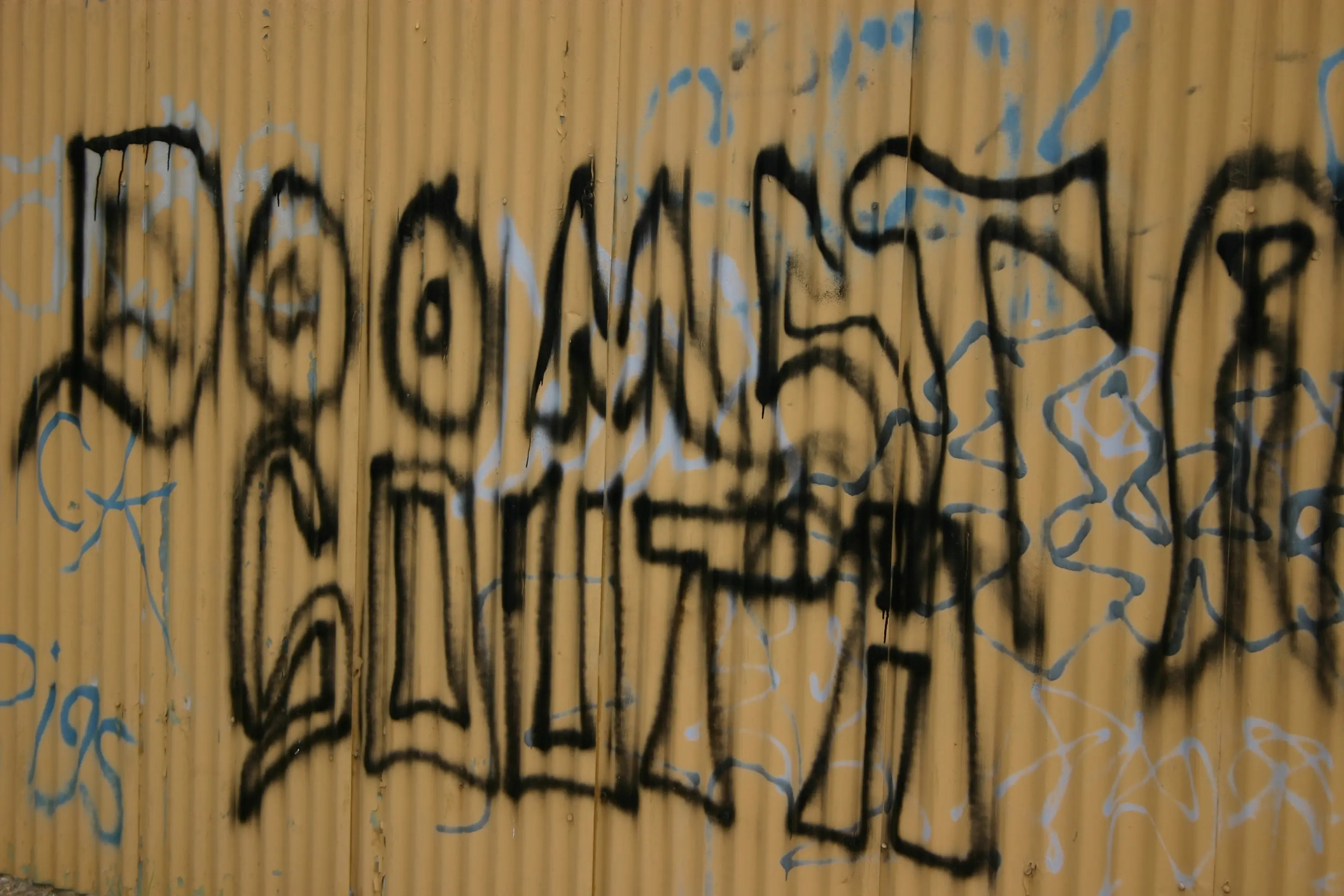 Colorado Gangs On The Decline