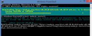 node install