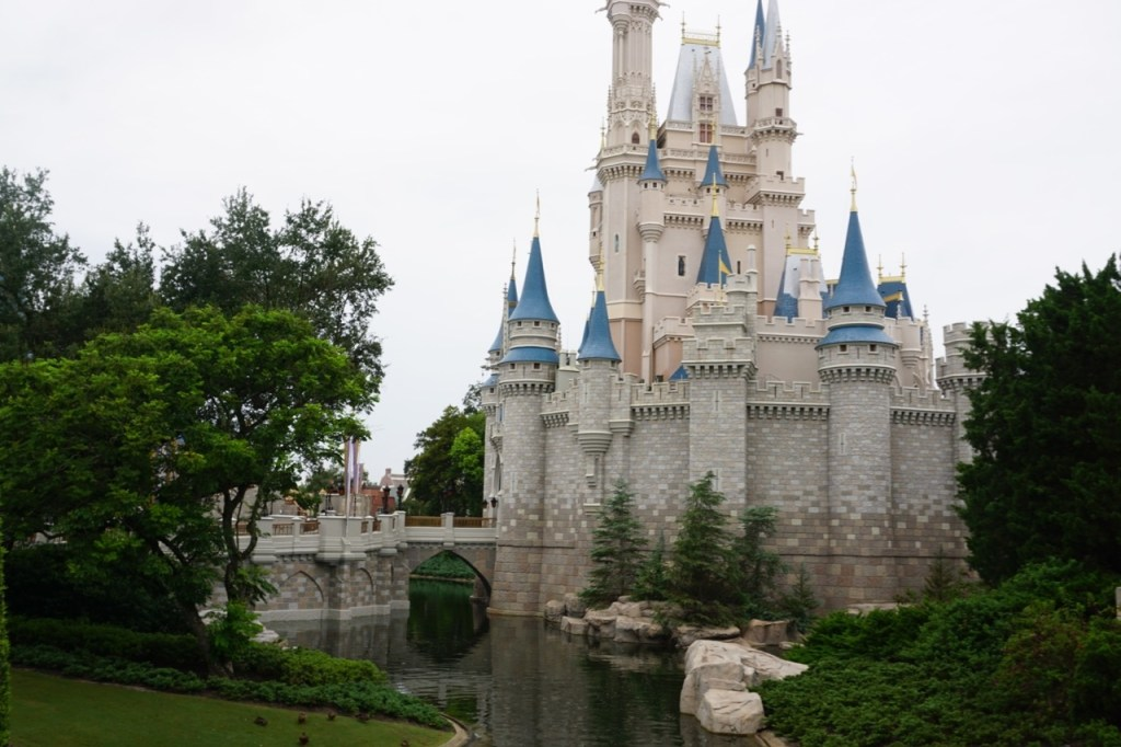 Tips for Disney World in a Day!