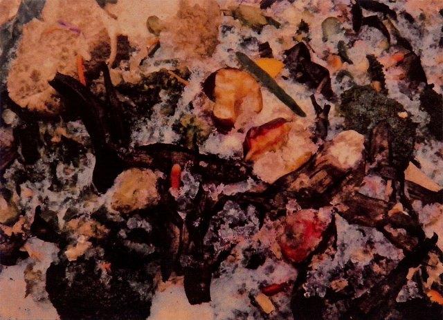 Compost-Modernism, photograph by Ross Bachelder