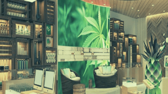 Everything to Know About Your First Dispensary Visit