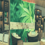 Everything You Need to Know About Your First Dispensary Visit