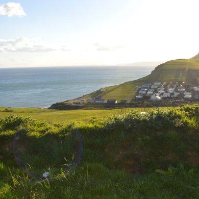Morning View from Van, Dorset