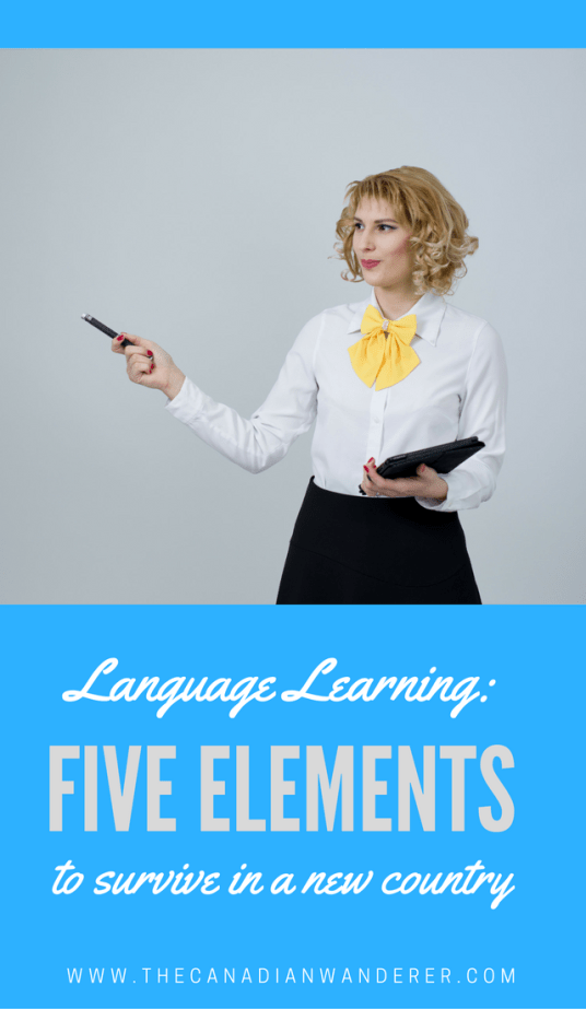 Five Language Elements to Survive in Any Country - Language tips and things to learn when living abroad for better integration | Work Abroad | Study Abroad | Volunteer Abroad