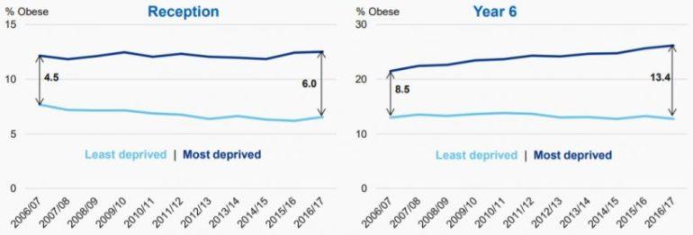 Obesity Three