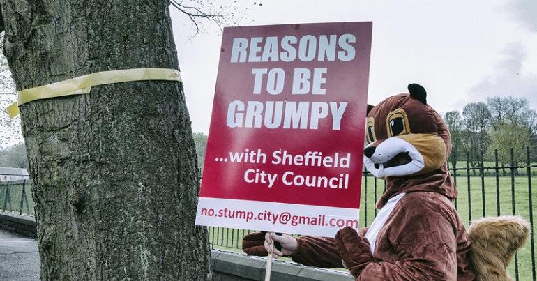A rather grumpy Sheffield squirrel