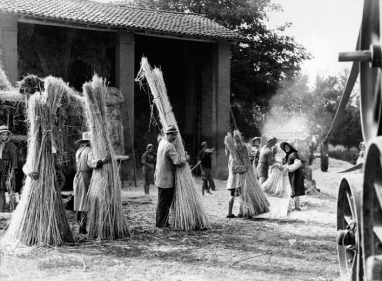 Stigliatura, 1930s – The Canna Chronicles