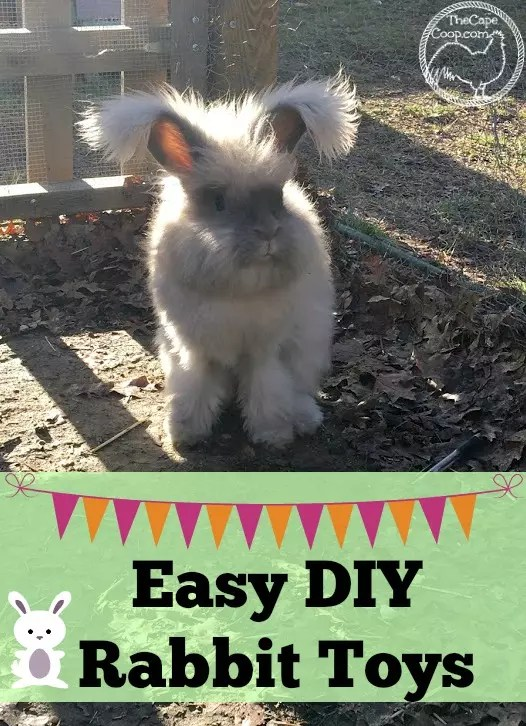 Easy Diy Rabbit Toys The Cape Coop