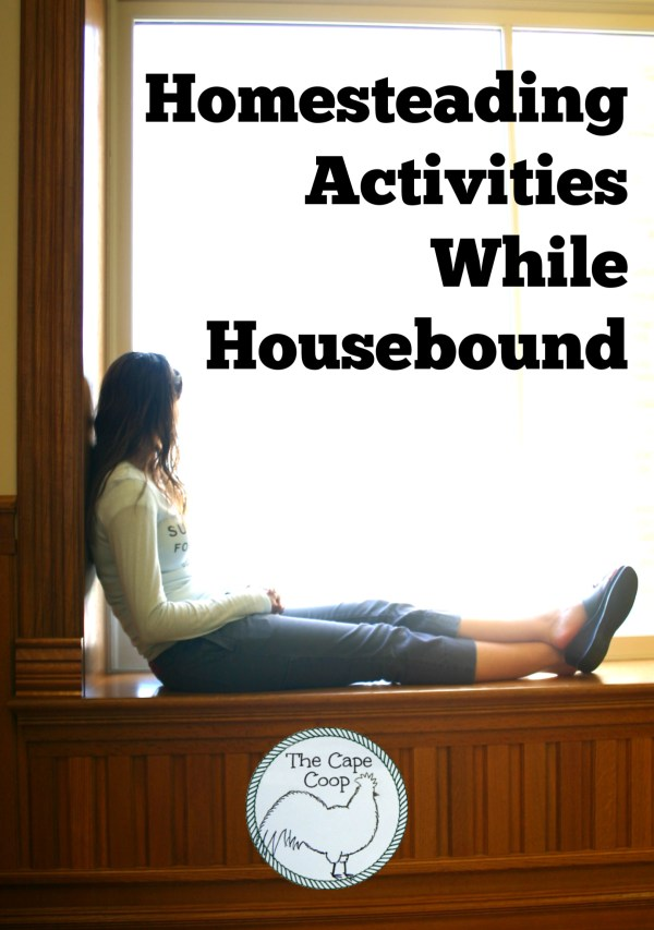 Homesteading Activities While Housebound