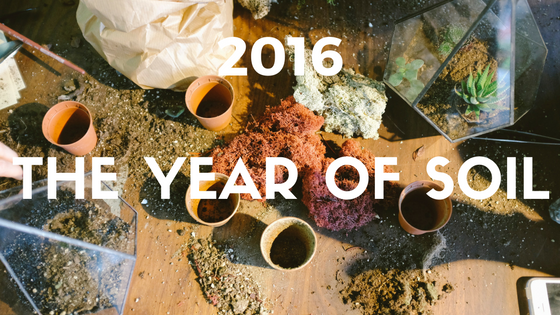 2016: The year of soil.