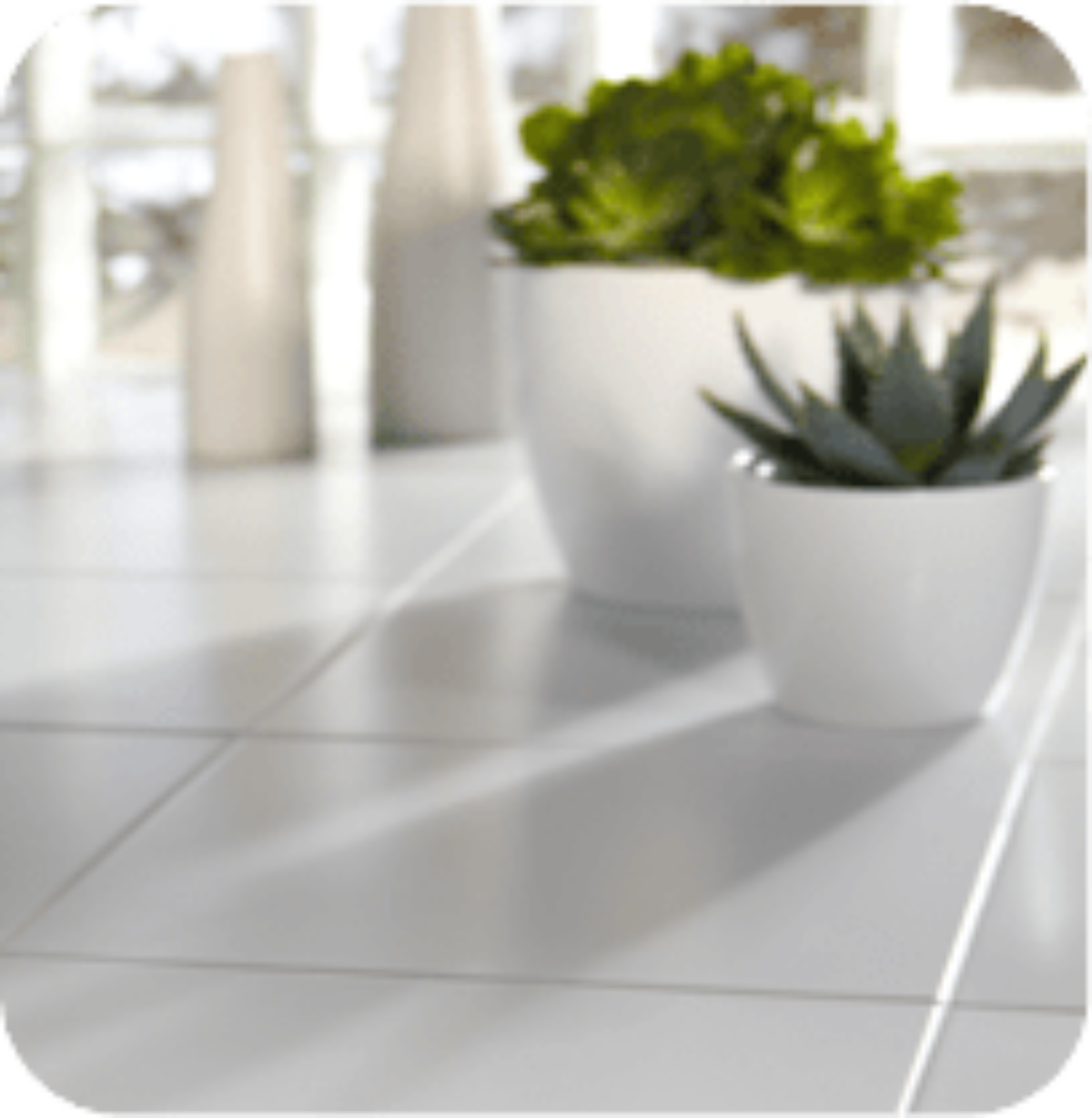 tile and grout cleaning legacy carpet