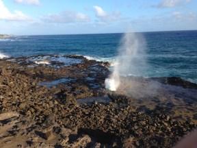 kauai spouting horn