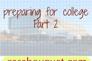 College preparation II major, career, scholarships