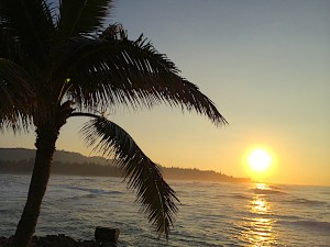 North Shore Oahu has interesting things to do on Oahu. Historic surfing sites, cultural sites, and fantastic scenery. Waialua, Waimea Valley, Sunset Beach.