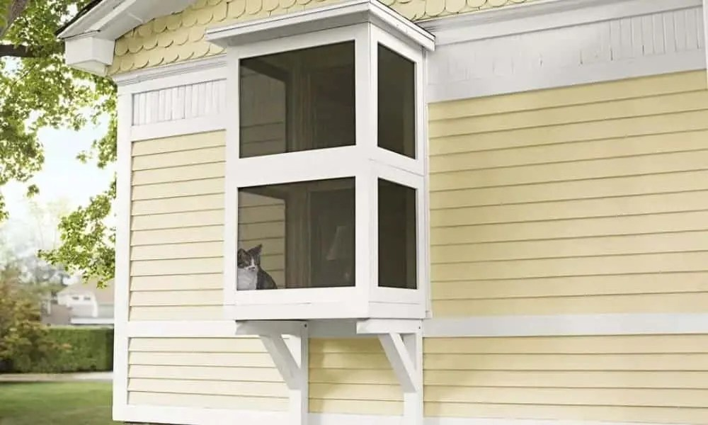 cat window box catio