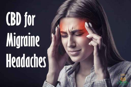 cbd oil for migraines