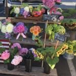 Order Flowers Roseville Rocklin Loomis Granite Bay