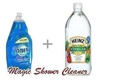 Vinegar Dawn Magic Shower Cleaner The CentsAble Shoppin - Dawn bathroom cleaner