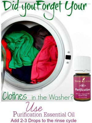 Easy Solution for Wet Clothes Left in the Washer