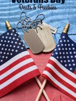 Veterans Day | Over 50 Deals & Freebies