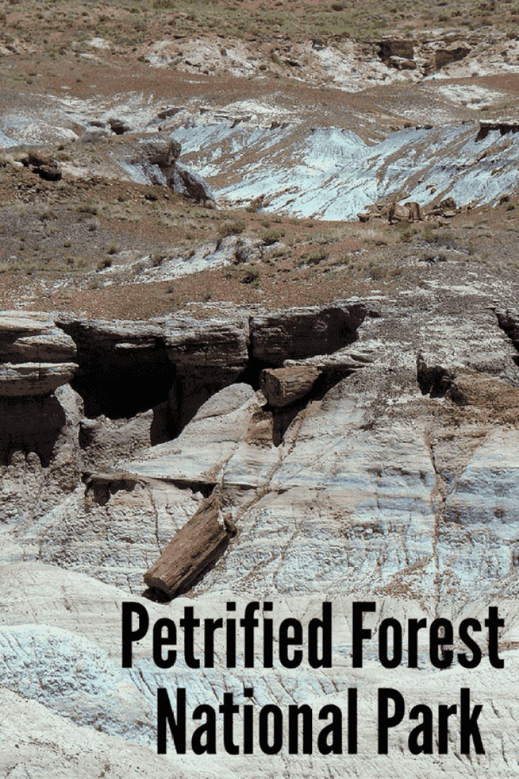 petrified forest natl pk single parents Petrified forest national park is a united states national park in navajo and apache counties in northeastern arizona most sites were single-family homes.
