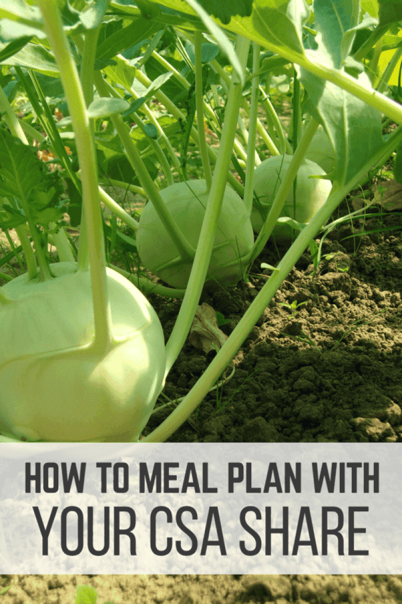 A CSA share can be a wonderful thing - in fact, it makes meal planning effortless!  Here are six tips to help you meal plan with your CSA.