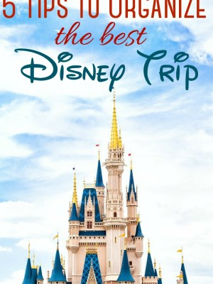 5 Tips to Organize the Best Disney Trip