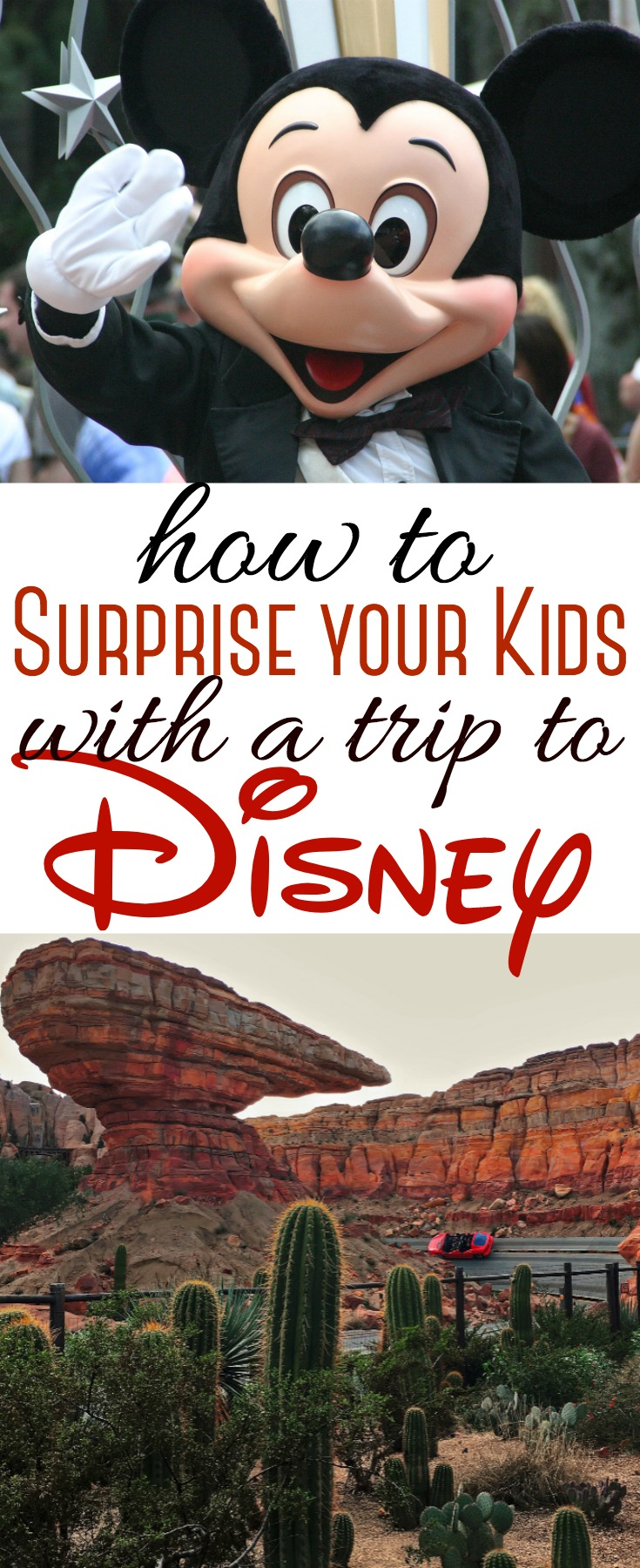It's one of the happiest places on earth - and every child's dream! Surprise your kids with a trip to Disney and watch the excitement begin!